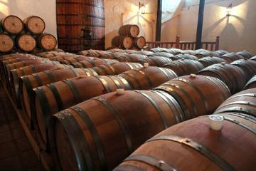Ganztägige Weingütertour ab Santiago