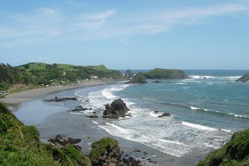 Isla de Chiloé y pingüinos de Puñihuil desde Puerto Montt