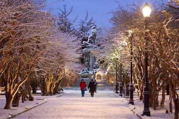 Punta Arenas City Tour