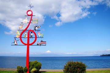 Viagem diurna: Cidade Llanquihue de Puerto Montt
