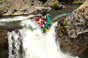 Adventure Rafting Class III and IV in Tenorio River from Playa...