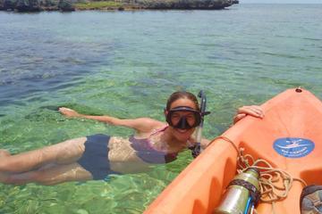 Kayak and Snorkel Tour in Tamarindo Beach from Flamingo Beach