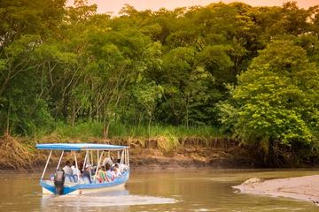Palo Verde Wildlife Tour from Playa Hermosa-Coco Beach
