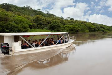 Palo Verde Wildlife Tour from Tamarindo
