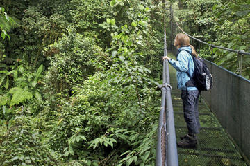 Sky Walk Tour with Hanging Bridges and Nature Preserve