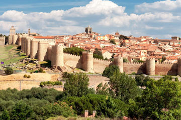 Avila and Segovia Guided Tour with...
