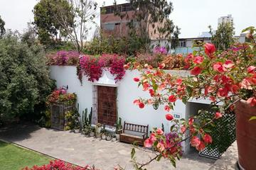 Private Tour Lima City Tour and Larco Museum Tour