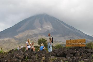 Arenal Volcano National Park Hike with Hot Springs