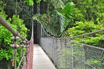 Parque Místico Puentes Colgantes desde La Fortuna