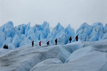 Caminhada de dia inteiro à Geleira Perito Moreno