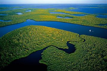 Day tour Everglades National Park and Art Deco District in Miami