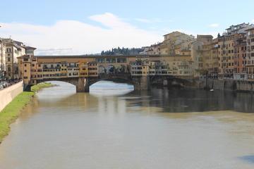 Excursión semiprivada: Excursión de un día a Florencia y Pisa desde...