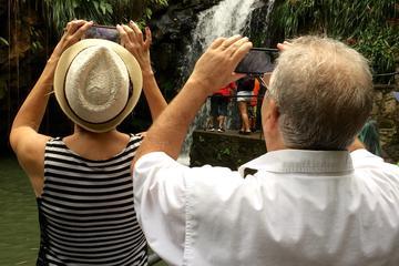 Grenada Shore Excursion: Waterfalls...