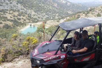 Offroad Wildlife Buggy Drive