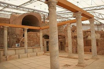 Private Tour: Ephesus and Terrace...