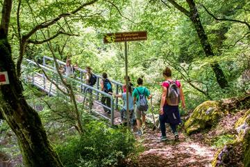 Hiking the Menalon Trail
