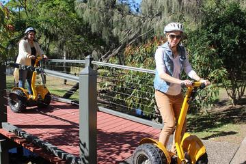 Gold Coast Segway Mcintosh Island Tour