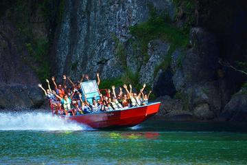 Suva Shore Excursion: Fiji Rivers Jet...