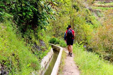 Caminhada Levada Madeira - Maroços