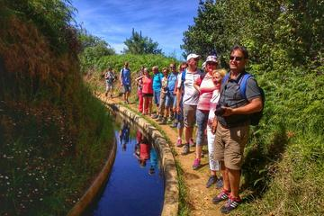 Half Day walking- Levada dos Prazeres