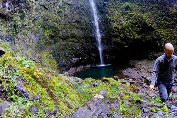 Paseo por Madeira Levada - Caldeirao Verde