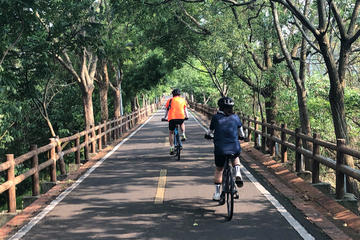 Leisure Cycling Experience & Gaomei Wetlands Sunset & Fengjia Night...