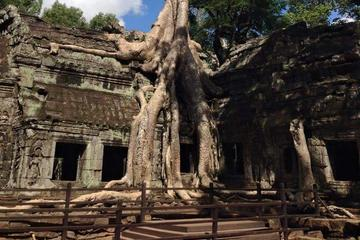 Half-Day Ta Prohm and Banteay Kdei Tour