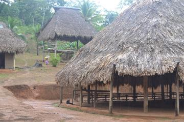 Excursión por la selva y un pueblo de emberá desde Ciudad de Panamá