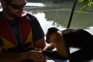 Ozean zu Ozean-Tour: Panamakanal und Dschungel