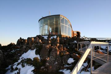 Small-Group Tour from Hobart Including Mt Wellington, Bonorong...