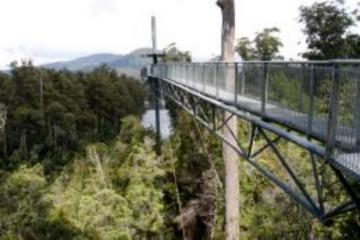 Small-Group Tour from Hobart to Mt Wellington and Tahune AirWalk with...