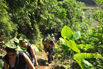 4-Day Ba Be National Park Trekking Tour from Hanoi