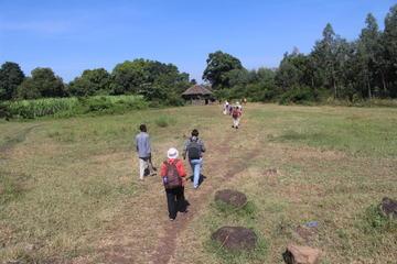 8-Day Cultural Tour through Ethiopia...