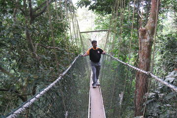 Full Day Taman Negara Tour with Batu Caves with Complimentary Dinner