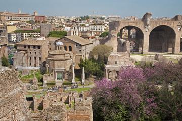 Private Tour: Palatine Hill in Rome Including Domus Augustana