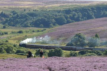Steam Trains, Whitby and the Moors Tour from York