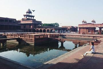 Private Full-Day Trip to the Taj Mahal Fatehpur Sikri and Agra Fort...