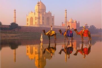 Private Tour: Ganztägige Agra Stadtrundfahrt inklusive Taj Mahal und...