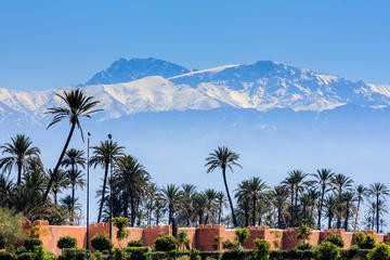 2-Day Marrakech Tour: Free Day, Berber Life or Cooking Class from Casablanca