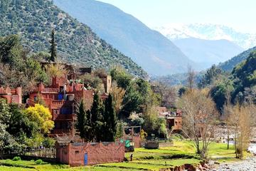 4-Hour High Atlas Mountains Berber...