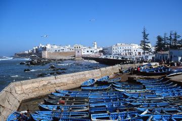 Tour privato di un giorno: gita giornaliera a Essaouira da Marrakech