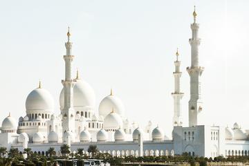 Tour de un día completo a Abu Dhabi desde Dubái con guía que habla...