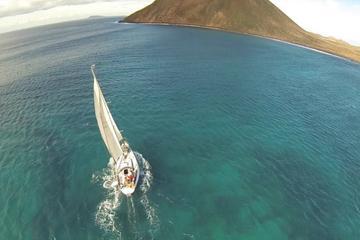 Tour privado de un día en barco a Isla Lobos desde Corralejo