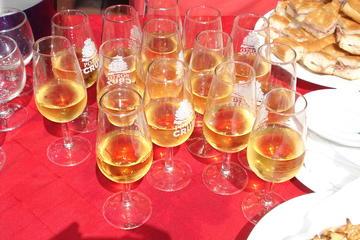 Excursão de 9 dias: Excursão vinícola portuguesa saindo de Porto