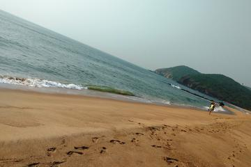 Full day Private tour of Vizag