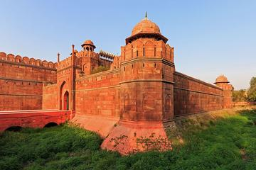 Half Day Old Delhi Walking tour and Red Fort Visit