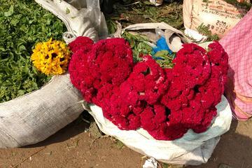 Morning tour of Kolkata with Flower Market