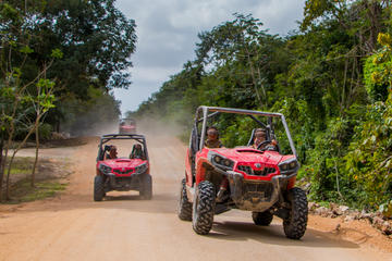 Dschungel-Buggy-Tour ab Playa del...