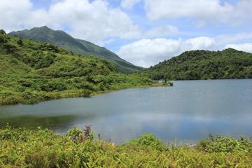 Dominica Half-Day Tour: Freshwater Lake, Middleham Falls, Ti Kwen Glo...
