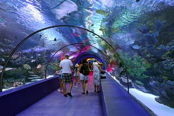 antalya city tour with duden waterfall and antalya aquarium visit